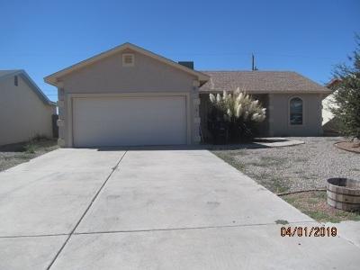 Alamogordo Single Family Home For Sale: 300 Santa Fe Dr