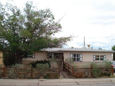 Alamogordo NM Single Family Home For Sale: $119,900