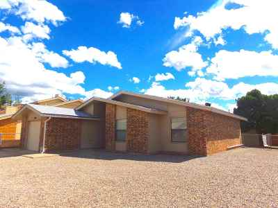 Alamogordo NM Single Family Home For Sale: $148,700