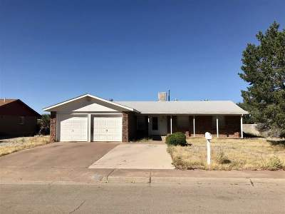 Alamogordo NM Single Family Home For Sale: $129,000