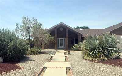 Alamogordo NM Single Family Home For Sale: $194,500