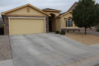 Alamogordo Single Family Home For Sale: 2479 Wyatt Way