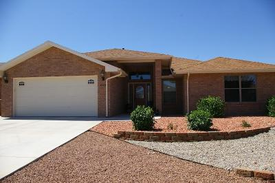 Alamogordo Single Family Home Under Contract: 444 Cielo Grande