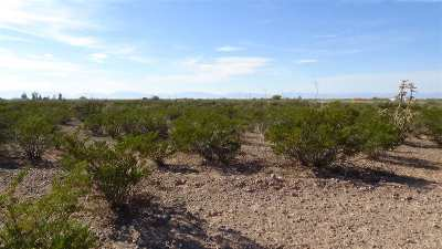 Residential Lots & Land For Sale: Old Spanish Trl