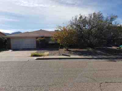 Alamogordo Single Family Home For Sale: 2502 Eastridge Dr