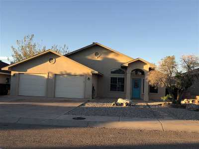 Alamogordo NM Single Family Home For Sale: $189,900