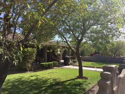 Alamogordo Single Family Home Under Contract: 700 Sixteenth St