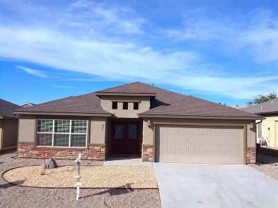 Alamogordo Single Family Home For Sale: 361 Palo Duro