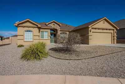 Alamogordo Single Family Home For Sale: 835 Copper Ridge