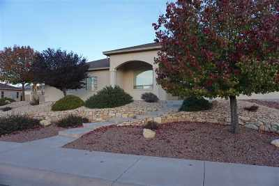 Alamogordo Single Family Home For Sale: 2439 Saguaro Lp
