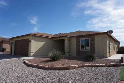 Alamogordo Single Family Home For Sale: 426 Tierra Bella Drive