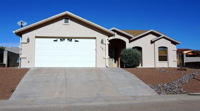 Alamogordo Single Family Home For Sale: 383 Chaco