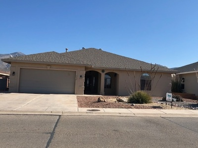 Alamogordo NM Single Family Home For Sale: $209,900