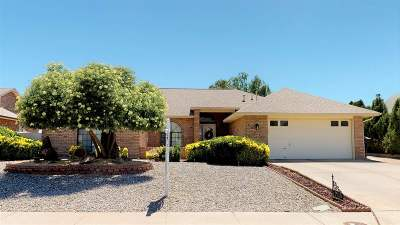 Alamogordo Single Family Home For Sale: 713 Eagle Dr
