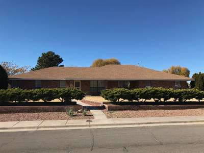 Alamogordo NM Single Family Home For Sale: $249,000