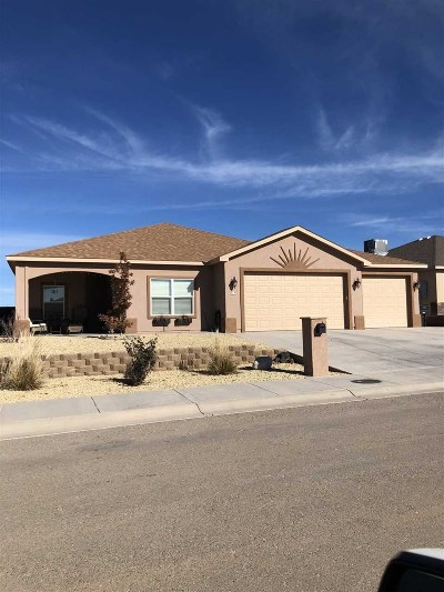 Alamogordo Single Family Home For Sale: 479 San Simon Drive