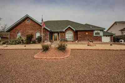 Alamogordo NM Single Family Home For Sale: $278,000