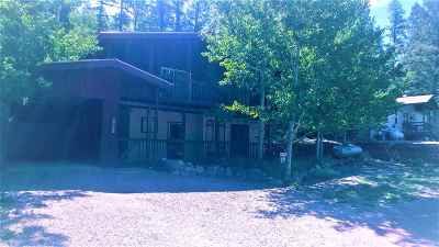 Cloudcroft Single Family Home For Sale: 805 Columbine Blvd