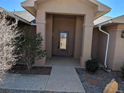 Alamogordo Single Family Home For Sale: 354 Casa De Suenos