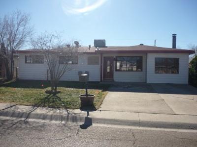 Alamogordo Single Family Home For Sale: 1304 Catalina Ln