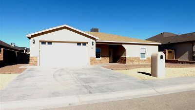Alamogordo Single Family Home For Sale: 507 Tierra Bella Drive