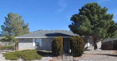 Alamogordo Single Family Home For Sale: 214 Shadow Mountain Dr