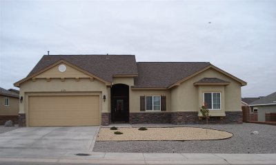 Alamogordo Single Family Home For Sale: 338 Palo Duro