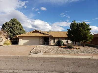 High Rolls, La Luz, Tularosa, Alamogordo, Cloudcroft, Bent Single Family Home For Sale: 434 Eagle Dr