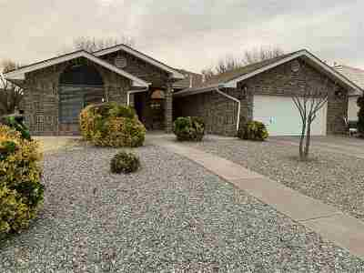 High Rolls, La Luz, Tularosa, Alamogordo, Cloudcroft, Bent Single Family Home For Sale: 493 Eagle Dr