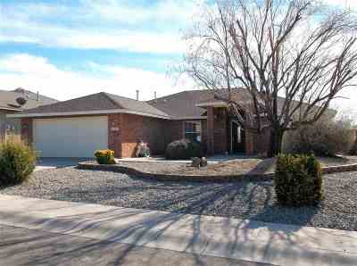Alamogordo Single Family Home For Sale: 934 Arroyo Seco