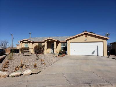 Alamogordo NM Single Family Home For Sale: $164,900