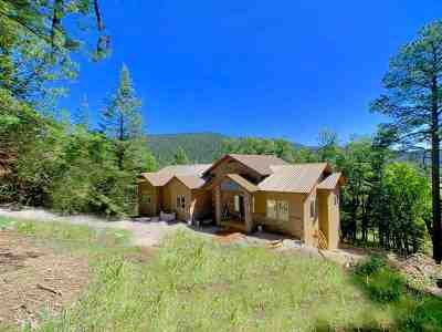 Cloudcroft Single Family Home For Sale: 41 Elk Springs