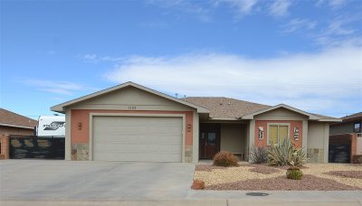 Alamogordo Single Family Home For Sale: 1123 Pajarito Dr