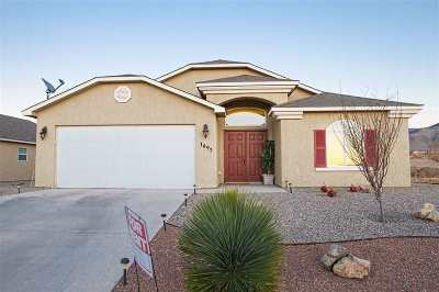 Alamogordo Single Family Home For Sale: 1491 Tierra Royas