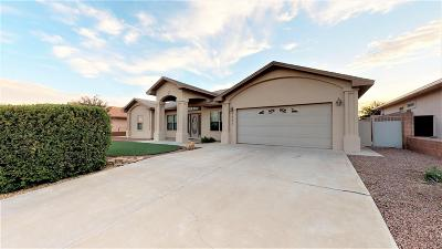 Alamogordo Single Family Home For Sale: 3881 Wood Lp
