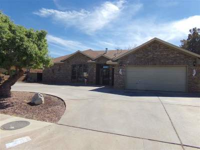 Single Family Home For Sale: 3931 Scenic Dr