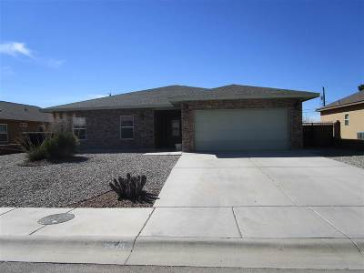 Alamogordo Single Family Home For Sale: 2415 Wyatt Way