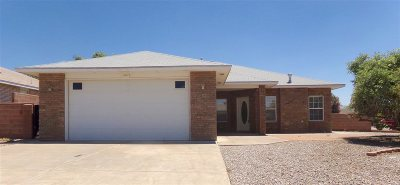 Alamogordo Single Family Home For Sale: 1024 San Miguel St