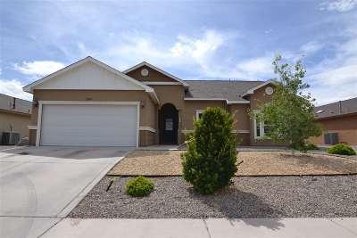 Alamogordo Single Family Home For Sale: 2407 Wyatt Way