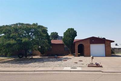 Single Family Home Under Contract: 1508 Pinon Dr