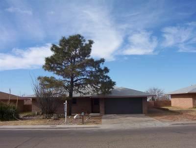 Alamogordo Single Family Home For Sale: 1105 Comanche Trl