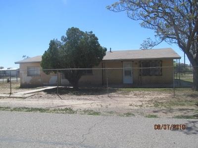 Alamogordo Single Family Home For Sale: 2603 Earhart Av