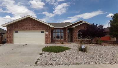 Single Family Home For Sale: 291 Palo Duro
