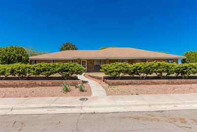 Alamogordo Single Family Home For Sale: 463 Eagle Dr