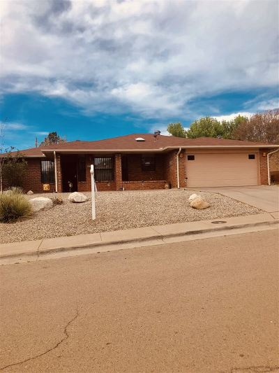 Alamogordo Single Family Home For Sale: 3217 Sunny Cir