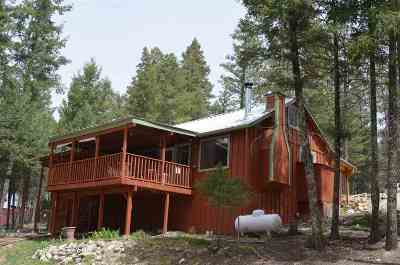 Cloudcroft Single Family Home For Sale: 7 Turkey Trl