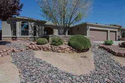 Alamogordo Single Family Home For Sale: 447 Camino Real
