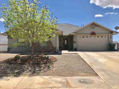 Alamogordo Single Family Home For Sale: 318 Bandolier