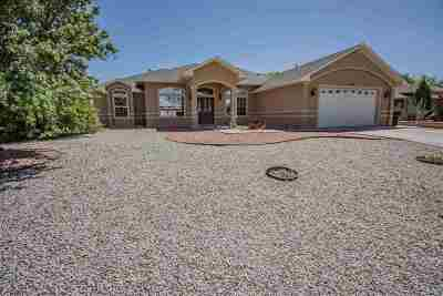 Alamogordo Single Family Home For Sale: 2176 Cielo Grande Corte