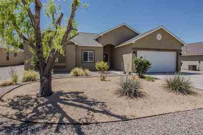 Alamogordo Single Family Home For Sale: 4010 Wood Lp